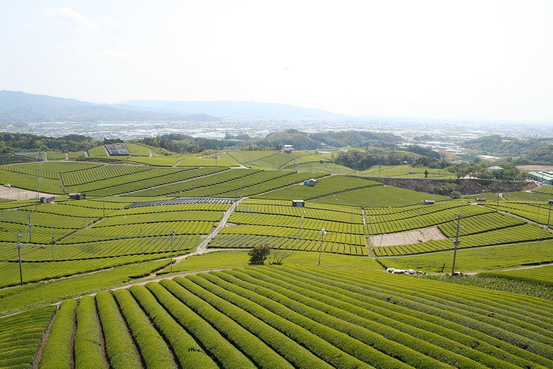 今、日本を走ろう。 福岡県 八女市